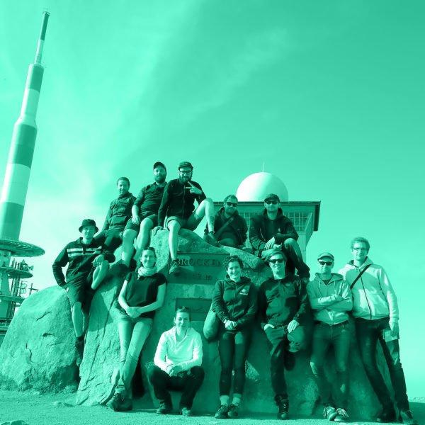 adseed - Karriere - Team