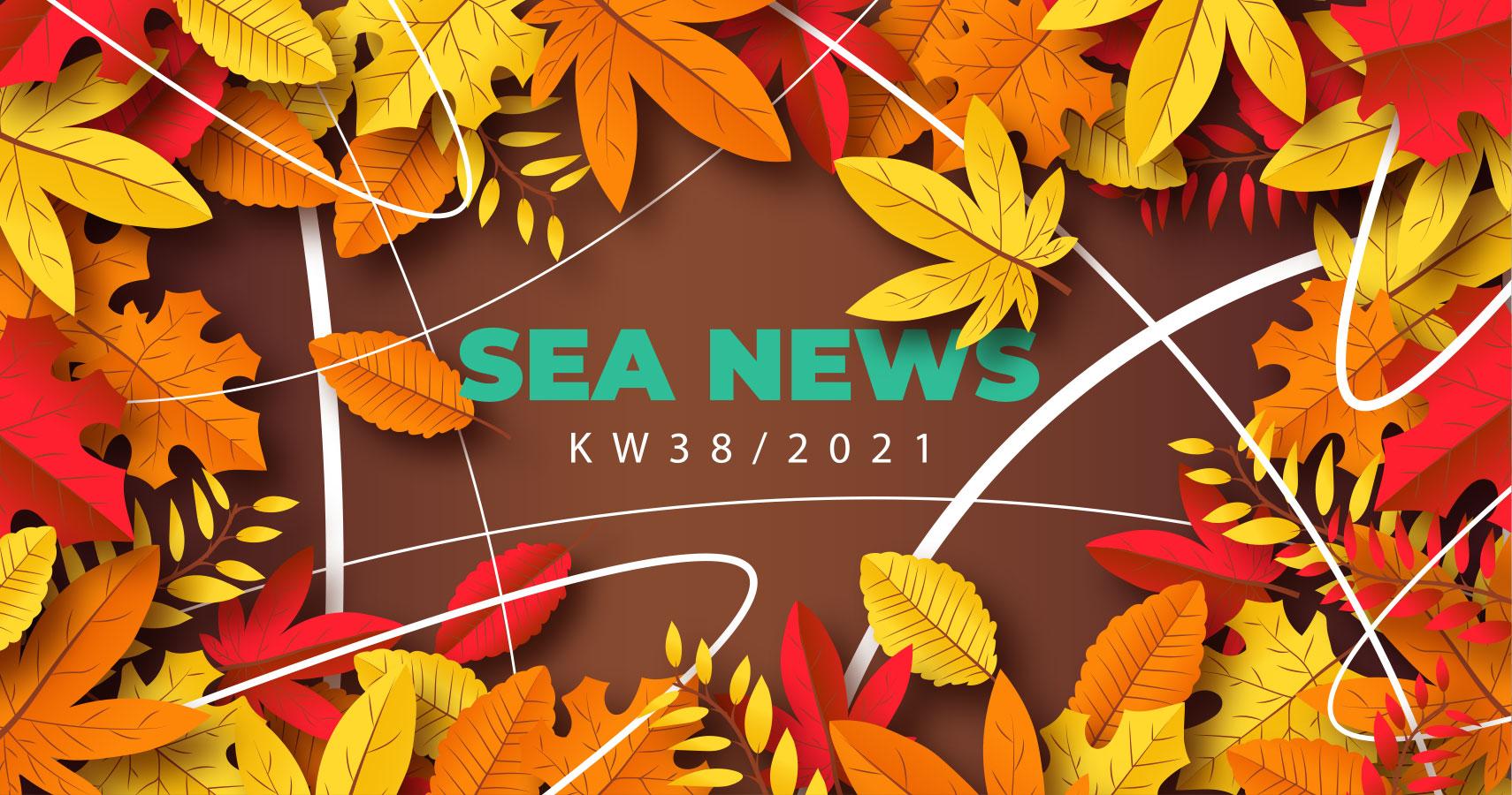 adseed – SEA News 38/2021